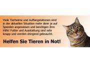 Helfen Sie Tieren in Not!